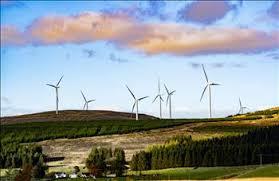 Đối tác Úc mong muốn hợp tác với EVN để phát triển dự án điện gió tại Việt Nam